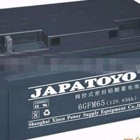 广东东洋TOYO蓄电池6GFM38全新现货