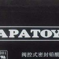 广东东洋TOYO蓄电池6GFM24原装东洋TOYO蓄电池现货