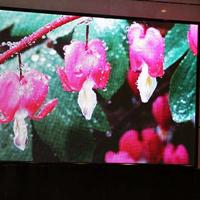 山东济南LED大屏幕LED全彩显示屏价格安装厂家