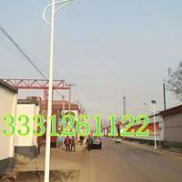 5米路灯 LED路灯 新农村路灯安装