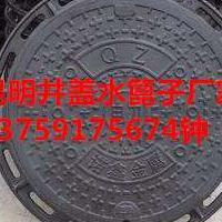 昆明球墨铸铁水篦子生产厂家(各种规格雨水篦子)
