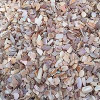 开特贝壳 水磨石骨料 贝壳细料