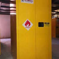 60加仑钢制柜丨防火柜丨正压柜丨危化品储存柜