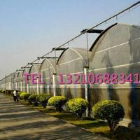圆拱连栋温室/薄膜连栋温室/阳光板连栋温室