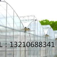 双拱薄膜连栋蔬菜温室/双膜连栋辣椒大棚/双拱双模连栋大棚厂家