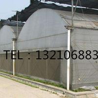 建造3亩地的圆拱薄膜蔬菜温室大棚造价多少钱