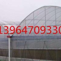 农业薄膜大棚 薄膜蔬菜大棚厂家直销 薄膜温室设计安装生产