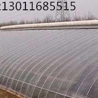 日光温室价格_日光温室建造_日光温室大棚