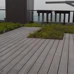 新一代贝多林PS户外板材―户外地板  防水防潮 环保耐磨 SGS检测