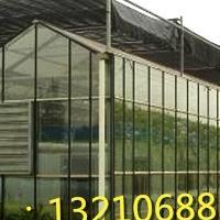 玻璃温室大棚的玻璃是用的钢化玻璃吗