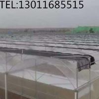 做连栋温室找青州齐鑫温室园艺造价低质量优