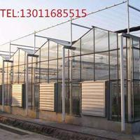 连栋温室-温室工程-温室园艺有限公司
