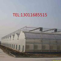 玻璃温室-温室园艺-日光温室