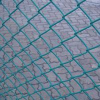 包塑铁丝网厂家-包塑铁丝网