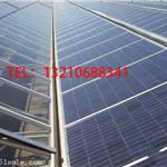 太阳能光伏温室骨架材料/光伏温室建设方案/太阳能光伏温室报价表