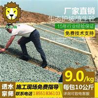大棕狮护坡植生砼增强剂生态透水混凝土添加剂河道边坡高速路护坡