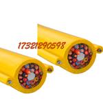 RVV2G电动葫芦电缆