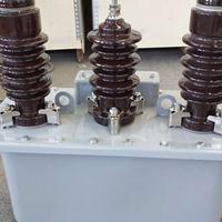 JLS-10户外计量箱带计量电表电缆