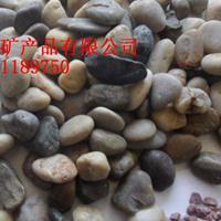 鹅卵石 天然鹅卵石  河沙 擦洗砂 保温砂浆专用沙