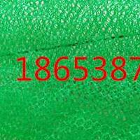 植草三维土工网垫EM3,三维植被网厂家