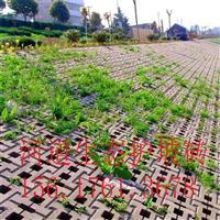 厂家直销舒布洛克生态护坡砖