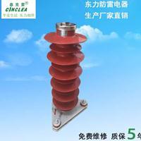 浙江东力防雷CCL-HY5WZ1-51/134氧化锌避雷器
