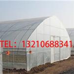 春暖式拱棚建设造价/春暖式拱棚价格表/春暖式拱棚配件设备