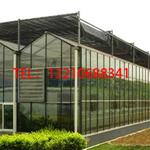连栋玻璃温室种植/展厅玻璃温室/中空钢化玻璃温室