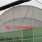 双拱双模连栋温室大棚/双拱薄膜连栋设备/双膜连栋温室设计