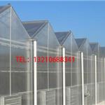 阳光板温室造价表/四川阳光板温室厂家/河北阳光板温室建设报价