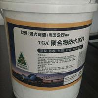 TGA硅烷纳米涂料