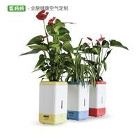 氧妈妈美肤e宝3B 桌面植物负离子空气净化器加湿增氧智能盆栽礼物