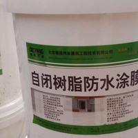 自闭树脂防水涂膜 环保型混凝土防水涂料