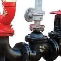 山东白象消防水泵结合器   多用式消防水泵接合器