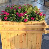 户外种植花箱、园林防腐木花箱花盆