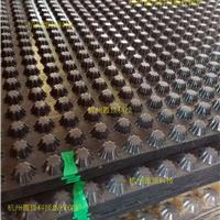 PVC排水板塑料排水板现货