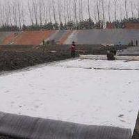 钠基膨润土防水毯3kg-6kg