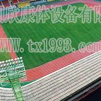 同欣广东人民体育场环保橡胶跑道案例预制型跑道厂家直销