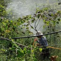 四川灌溉公司成都灌溉公司四川滴灌公司成都滴灌公司四川喷灌公司