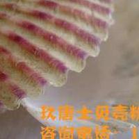 保定贝壳粉施工简单