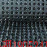 排水板 排水板 车库排水板 土工布 排水板厂家