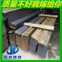 广东惠州止水钢板厂家