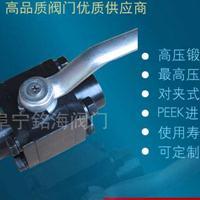 超高压可定制内螺纹对夹式高压球阀Q11N