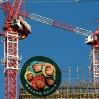 东风塔吊专用电缆3X25 2X10