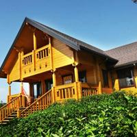四川木结构房屋,景观房设计,四川小木屋