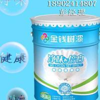 环保内墙涂料水漆代理建筑涂料厂家批发广东涂料品牌招商加盟