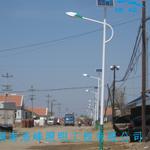 湖南郴州宜章批发路灯杆 专业定做灯杆找浩峰路灯厂家直销