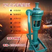 3PNL立式泥浆泵排污泵杂质泵清淤泵