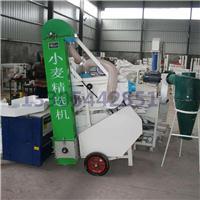 厂家推荐 全国销售 小麦精选机 玉米精选机 粮食筛选机 价格合理