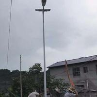 湖南新农村建设专用路灯厂家 新农村6米30W路灯什么价
